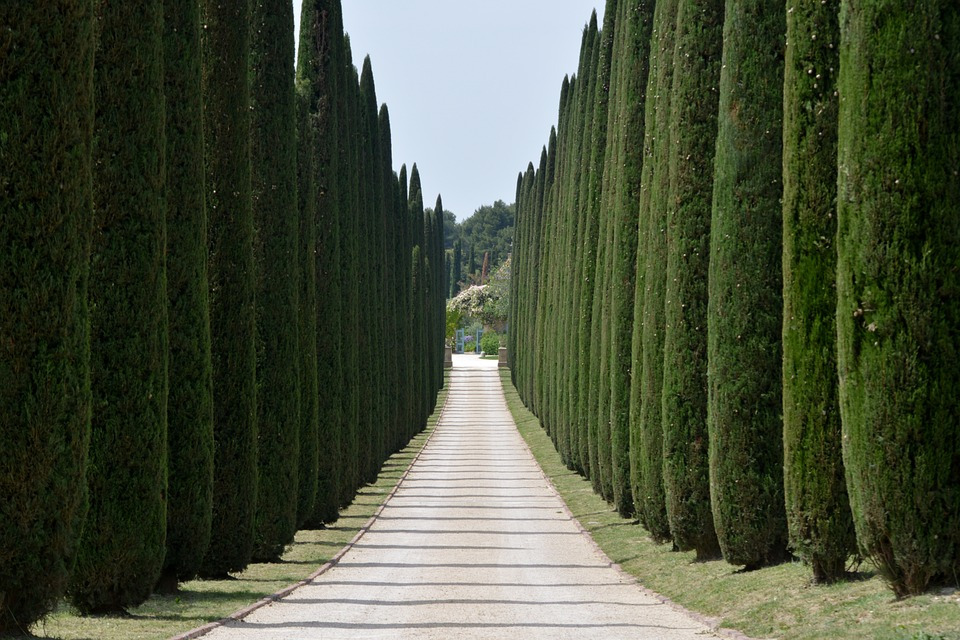 A guide to wine country, Chianti